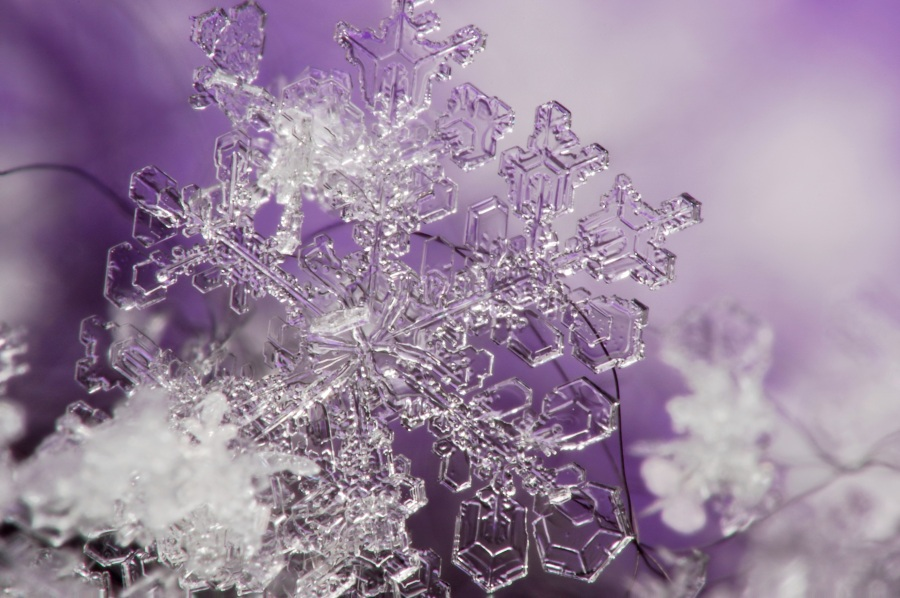 snowflake Christmas ice photo