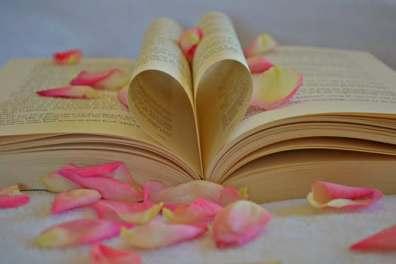 Book Petals Love Writing Novel Author Lorraine Ambers