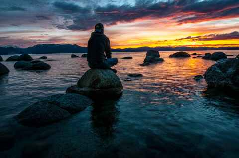 pexels-nature-wisdom-inspiration